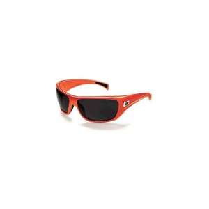 Cobra glasses, Bolle
